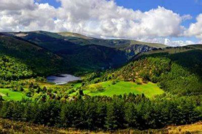 DerryBawn Ridge Glendalough